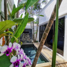 Coconut Grove Boutique Residence
