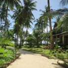 Sandy Feet Siargao (Sandy Feet Vacation Home Rentals)