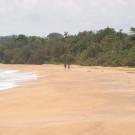 Bluff Beach Retreat